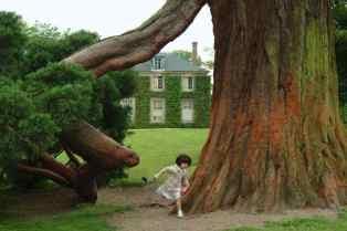 0026_sequoia_Pavillon-Jussieu_Petit-Trianon_Versailles_Jacques-de-Givry