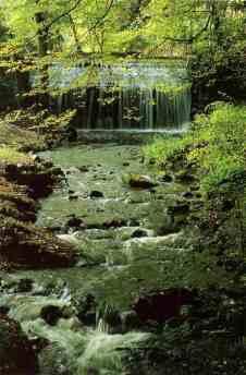 0095_Bouillons-des-Vaux-de-Cernay_Haute-Vallee-de-Chevreuse_Jacques-de-Givry