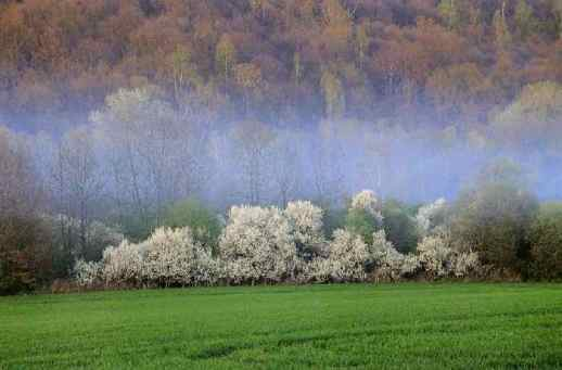 0096_Maincourt_L-Yvette-et-les-bois-de-la-Roncerie_Haute-Vallee-de-Chevreuse_Jacques-de-Givry